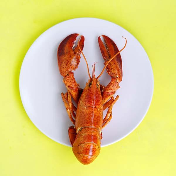 claudio's seafood
